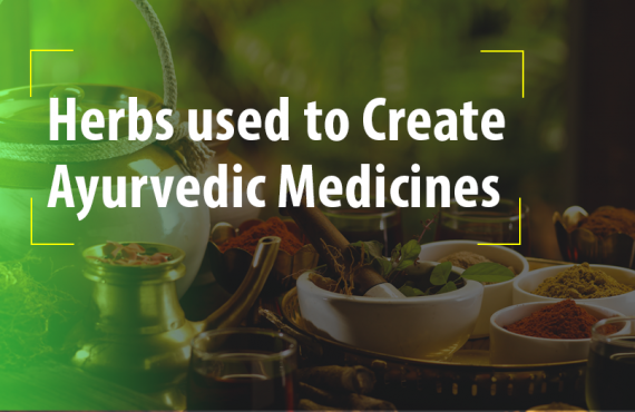 Common herbs to used to create Ayurvedic Medicines